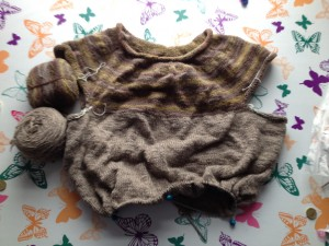 Handspun Bird Seed Jumper